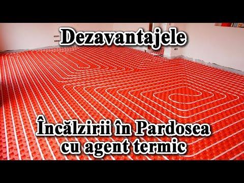 novokuznetsk curățare de paraziți)