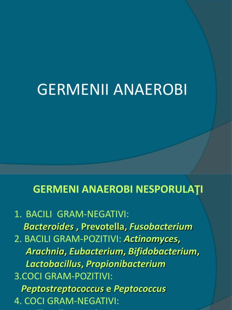 Examen citobacteriologic secretie vaginala (ex. Microscopic)   Medlife