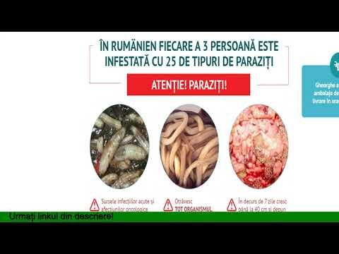 prevenirea viermilor paraziti