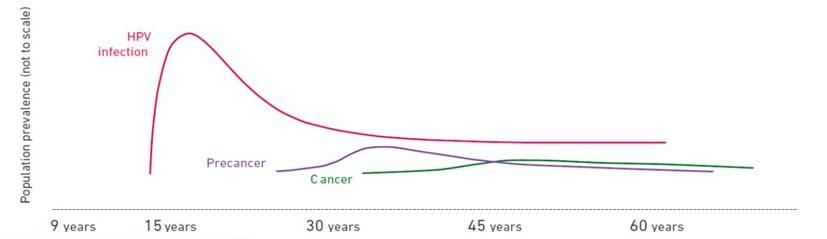 can genital hpv cause cancer preparate antihelmintice pentru alăptare