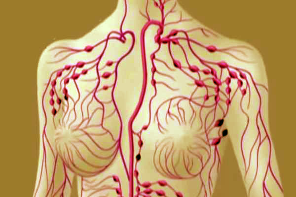 detoxifiant limfatic