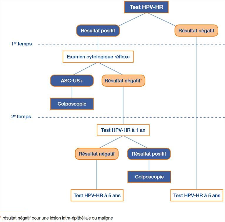 Hpv negatif et cancer, LES INFECTIoNS SEXUELLEMENT TRANSMISSIbLES - PDF Téléchargement Gratuit