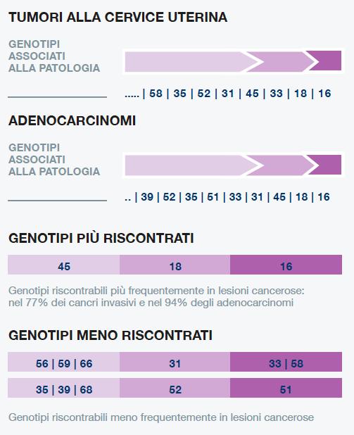 papilloma virus basso rischio)