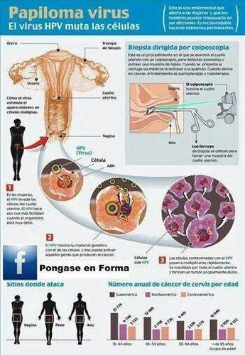 papilloma virus e biopsia