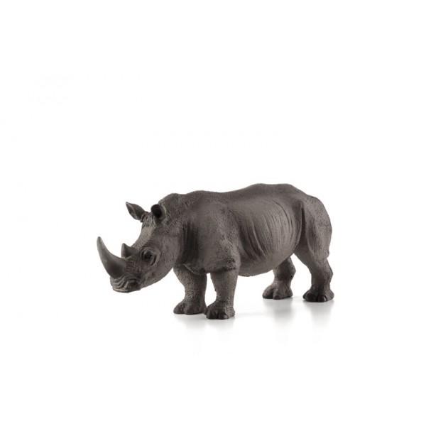 rinocer copil mic)